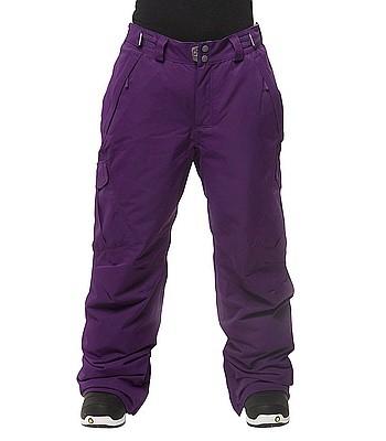 Kalhoty na snowboard Horsefeathers Arion purple